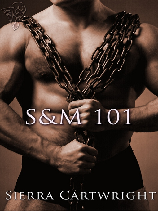 S&M 101 (eBook)